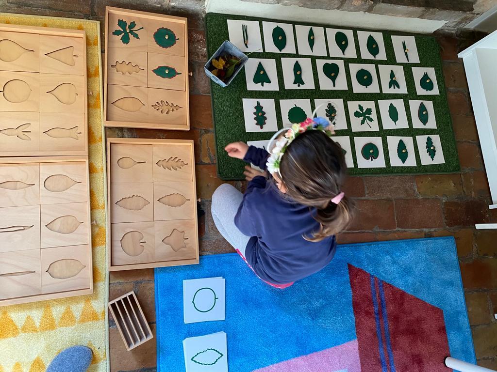 Homeschooling-montessori-parma-abilita-bambino-primaria-progetto-educativo-educazione